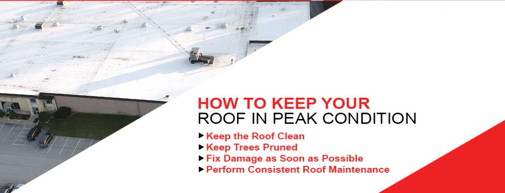 How To Keep Your Roof In Peak Condition