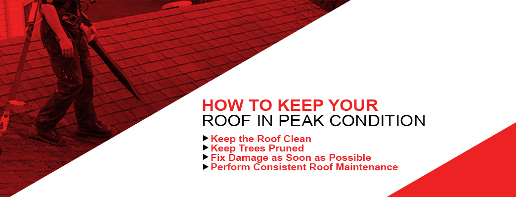 keep your roof in top condition