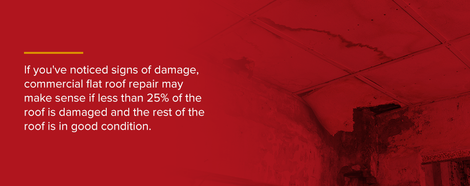 check roof for signs of damage